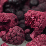 freeze dried fruit and vegetable suppliers