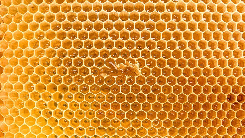 alternative sweetener suppliers